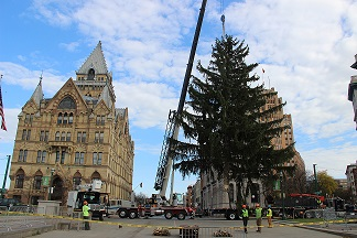 Clinton Square Tree 2014_reduced